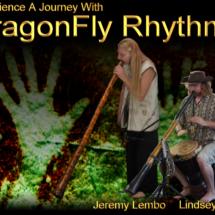 Dragon Fly Rhythms