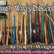 earthwaves 5-17 banner - Copy